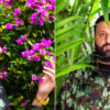 "DJ Khaled teams up with Drake on two new singles ""Popstar"" and ""Greece"""